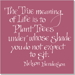 Trees, Nelson Henderson, Calligraphy Art Plaques, Inspirational Gifts